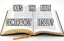 Esistono contraddizioni nella Bibbia?
