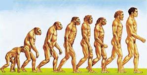 Al mito dell'uomo scimmia non crede più nessuno. Per primi gli scienziati. Perché allora insistere?